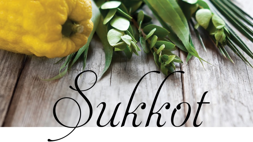 Sukkot_LA_Web